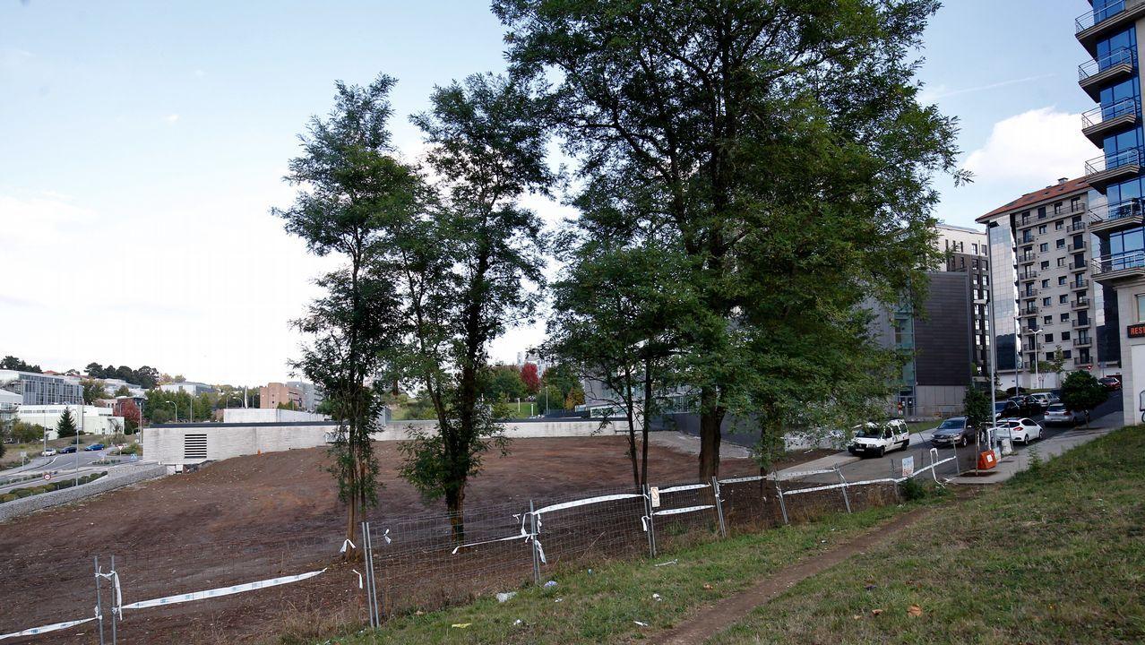 Alarma por la presencia de ratas cerca de un parque infantil de Milladoiro