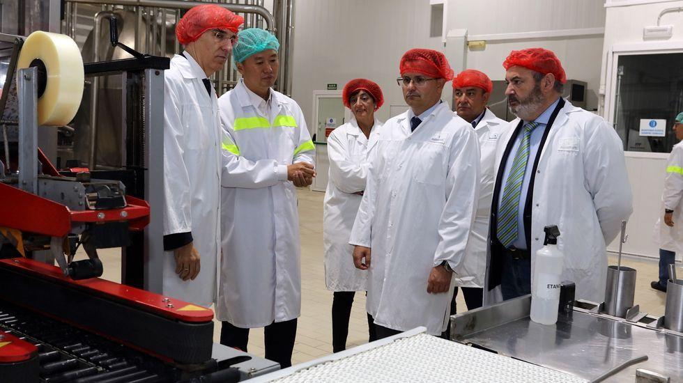 Los conselleiros de Economía (a la izquierda) y Medio Rural (en el centro) en una visita a la fábrica