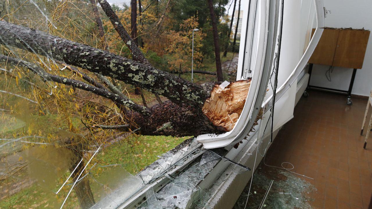 ASÍ HA CASTIGADO EL TEMPORAL A OURENSE.Las comarcas de A Limia y de Verín han sufrido daños en el campo y en edificaciones