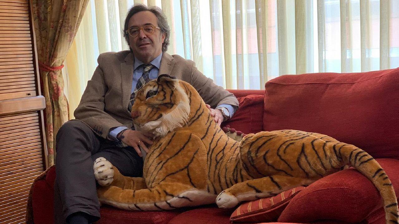 Daniel Formoso suele acudir a los cursos acompañado de «Canguelo», un tigre de peluche que representa el miedo escénico