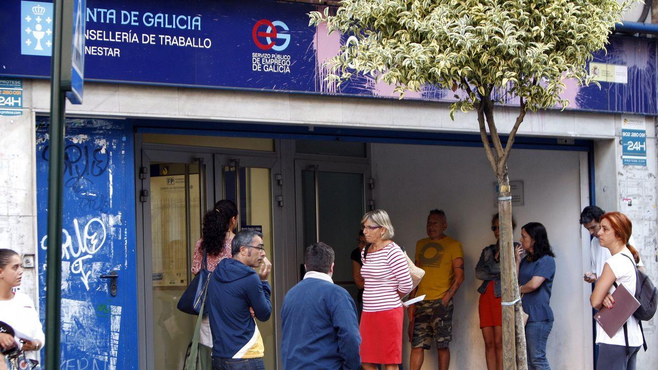 El PP propone la reforma de Vigozoo