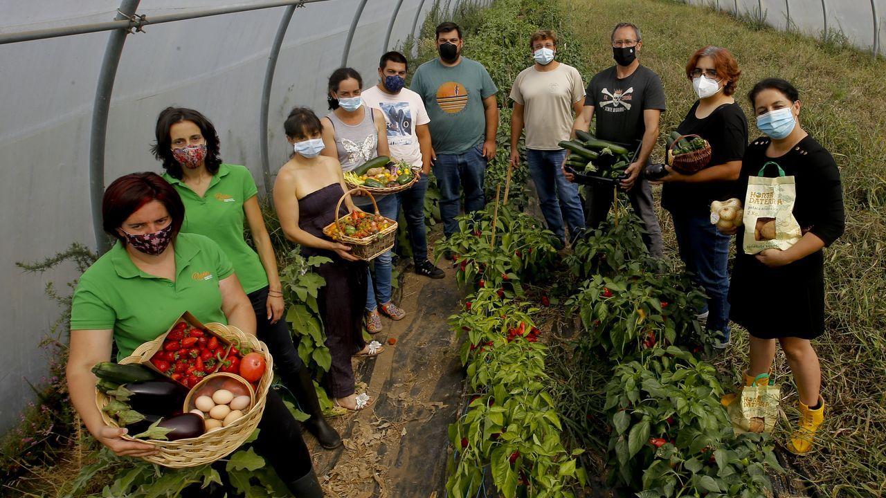 Tradición y calidad en los productos ecológicos de la marca Reserva de Biosfera Mariñas Coruñesas e Terras do Mandeo.Explotación de ganado vacuno en régimen ecológico en el municipio de Lugo