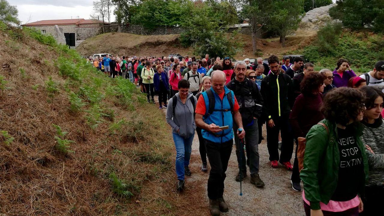 567 activistas en la andaina para proteger la Serra do Galiñeiro.Un ejemplar de lobo fotografiado en el concello coruñés de Dumbría