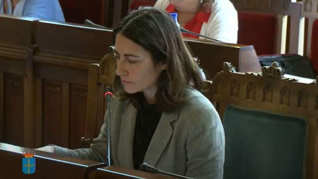 La presidenta de la Asociación Asturiana de Residencias de la Tercera Edad, Teresa Álvarez