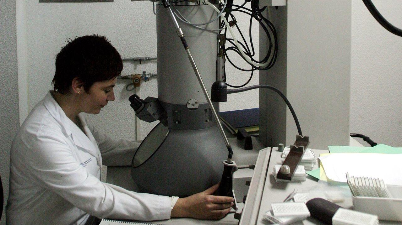 Vista de Feijoo al Cunqueiro.El microscopio actual viene del Meixoeiro
