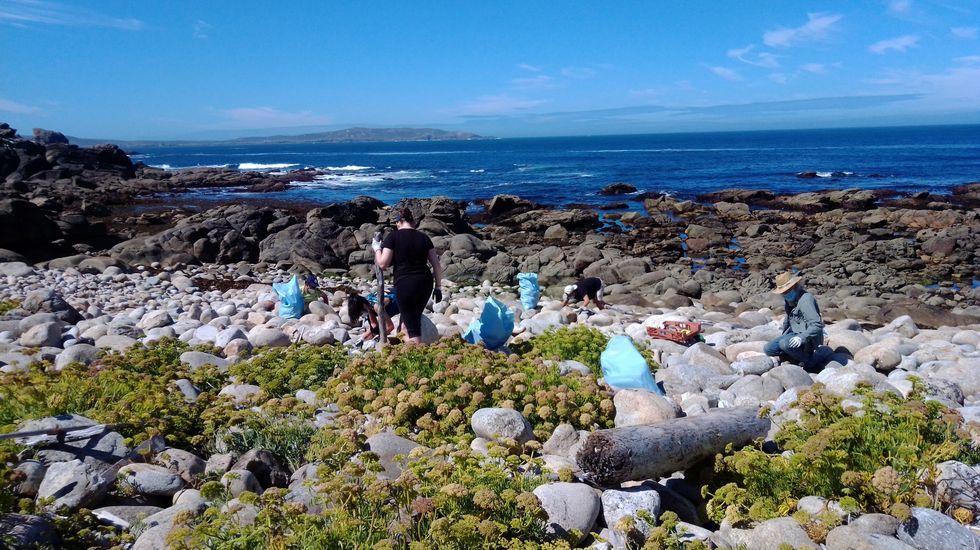 Los niños del colegio de Caión retiraron plásticos de la playa.Acantilados de la sierra de A Capelada