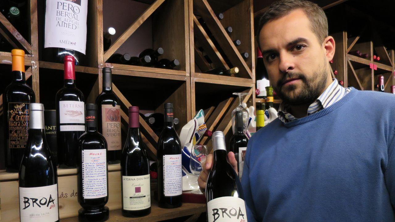Recogida de la aceituna en el municipio de Quiroga.Bruno Lobelle, nunha imaxe de arquivo, na adega do restaurante A Faragulla