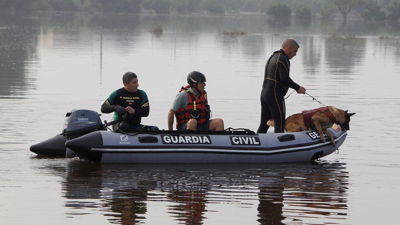 El cuerpo fue localizado por un voluntario en un canal de la Vega Baja valenciana