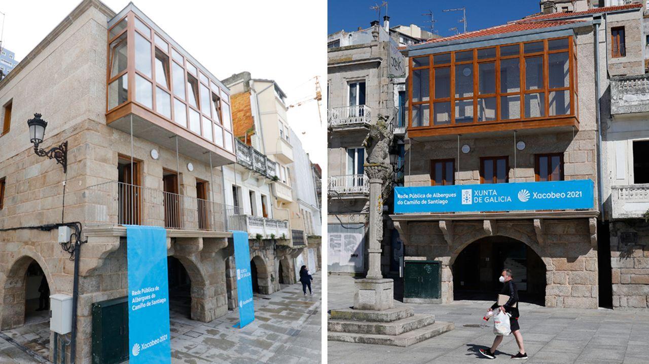 ¿Está sano el olivo histórico de Vigo?