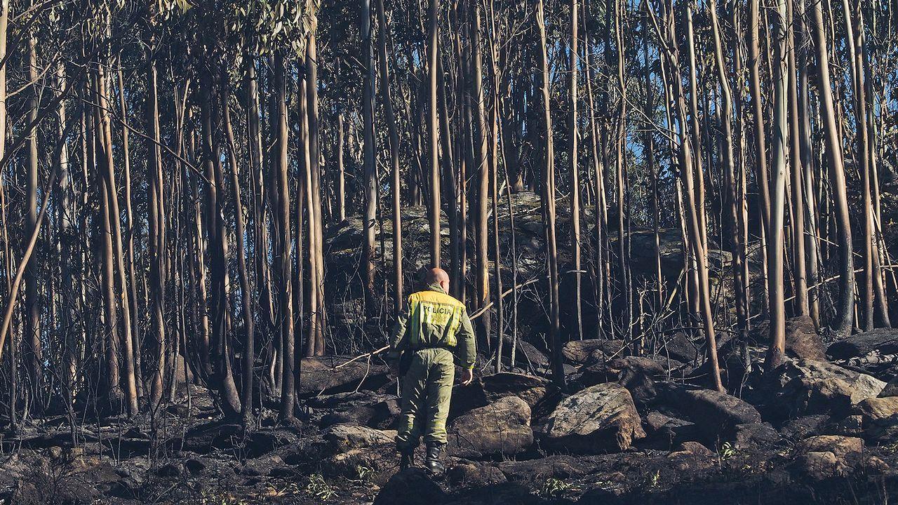 Zona de Bexo, en Dodro, donde se inició el devastador fuego que rápidamente saltó a Rianxo