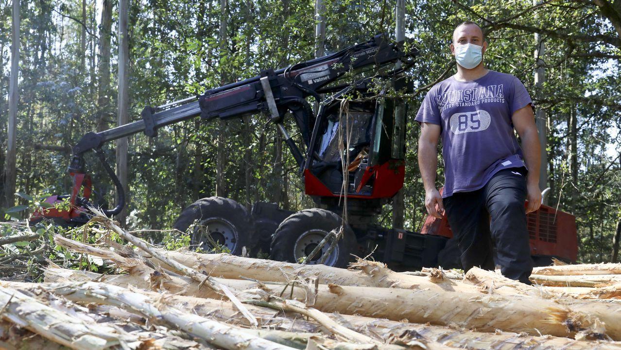 Tinelli Pereiro, hijo de Víctor Pereiro, en un monte del concello de A Baña donde trabajan