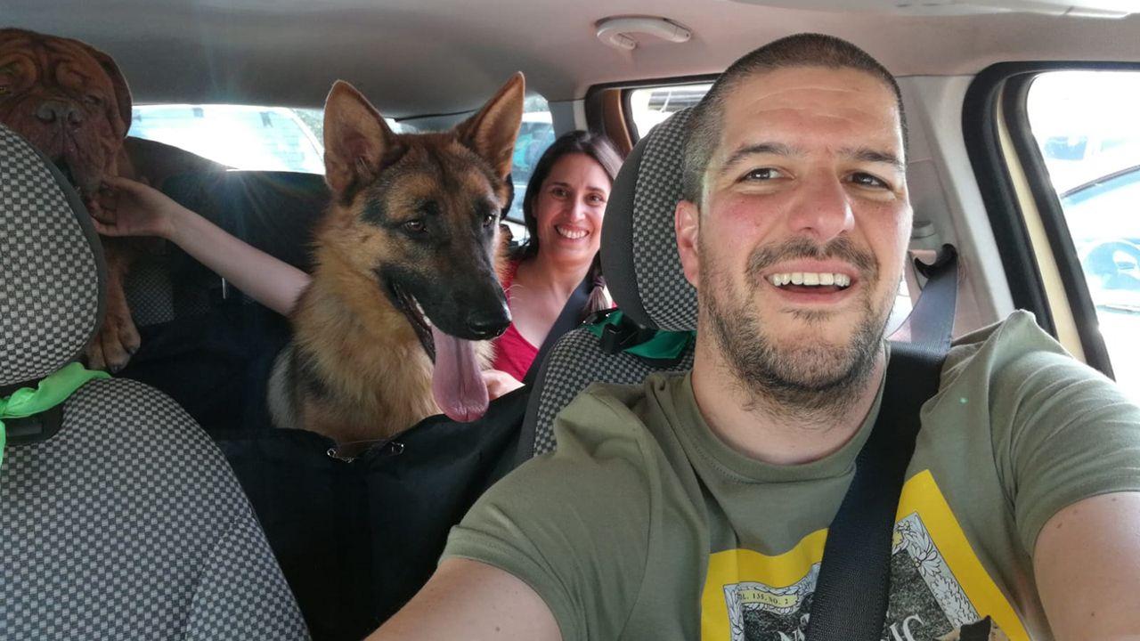 Una familia adopta a mauricio, el pastor alemán abandonado en el Albergue de Animales de Oviedo