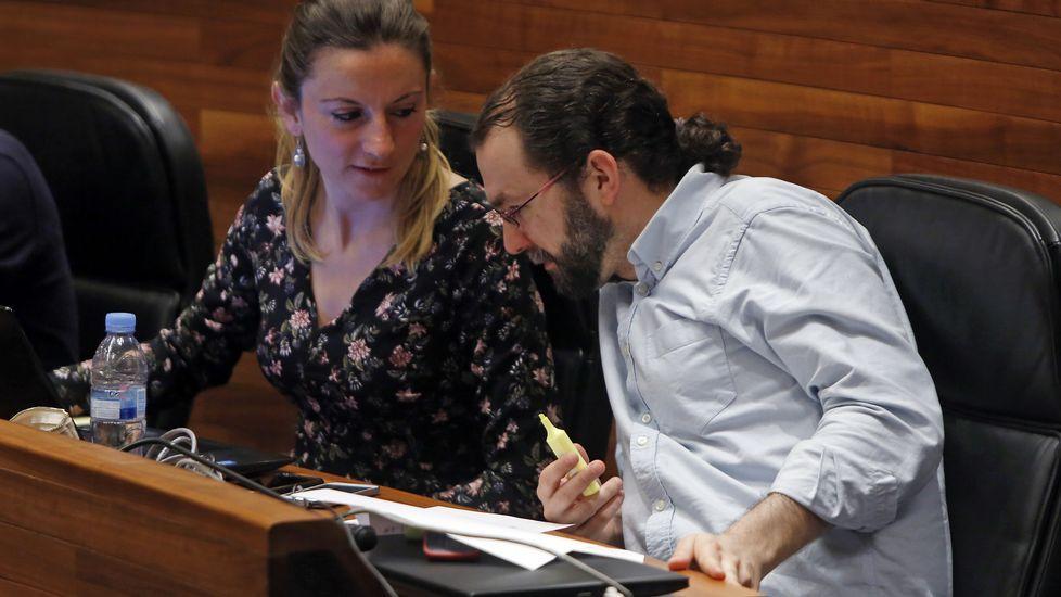 El diputado del PP, David González Medina..El diputado del PP, David González Medina.