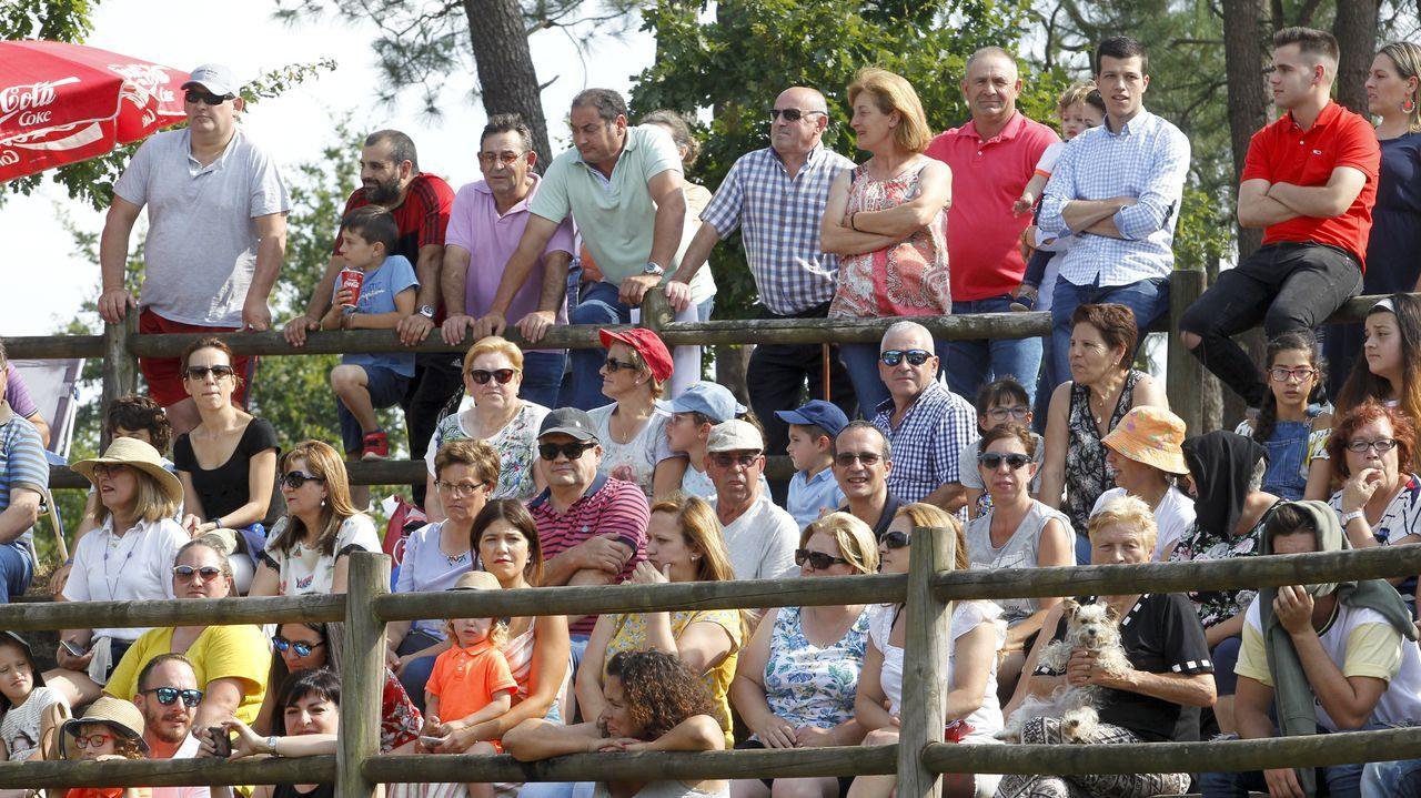 Las vaquillas triunfan en la Festa daXuventude.Banco de Libros de Oviedo