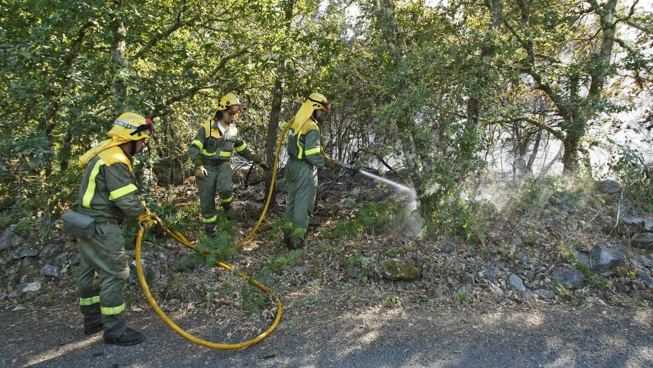 Mitin de Pedro Sánchez en Ourense.Imagen de archivo de un incendio en O Casal (Quins)