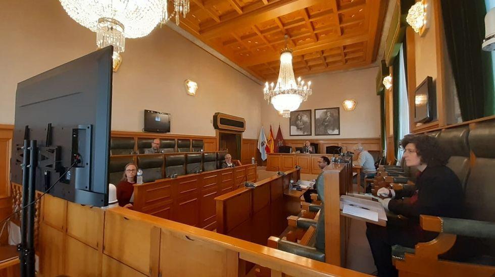 Una de las comparecencias celebradas en el Parlamento durante el estado de alarma