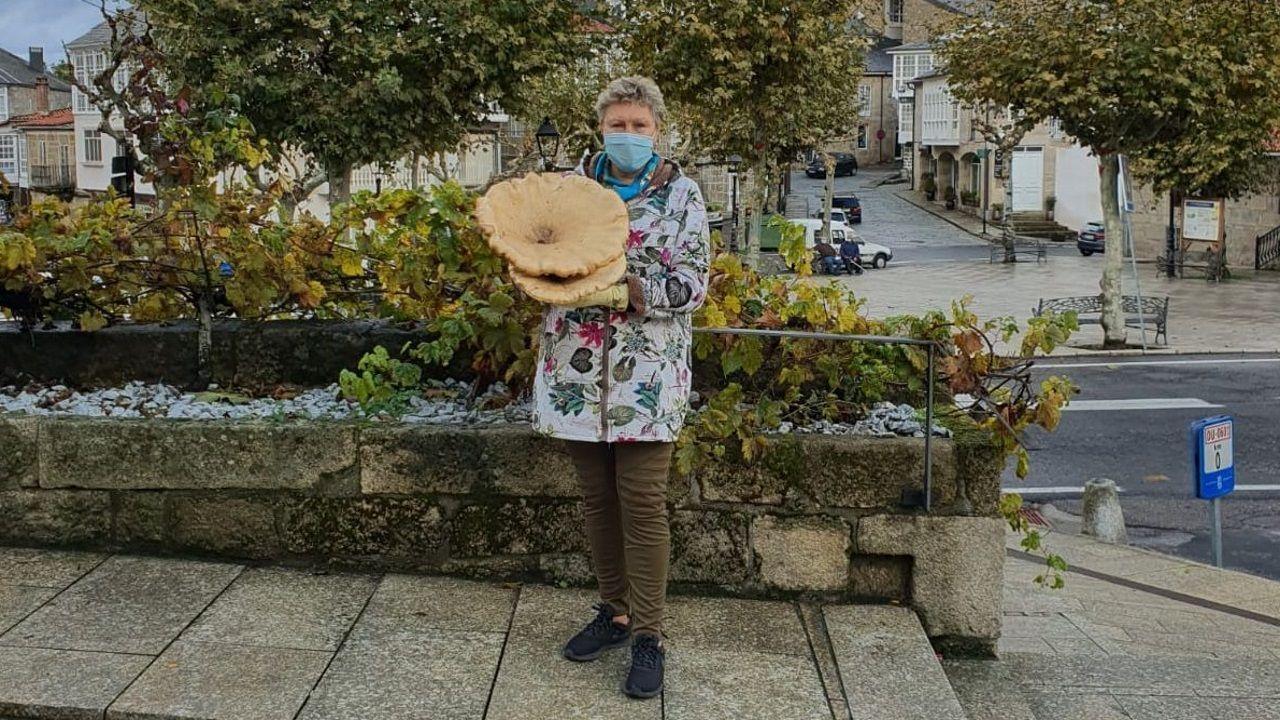 ¿Cómo podrá salir reforzado de la pandemia el sector del vino en Galicia?.Instalaciones de Boegas Gallegas, en Sober, donde se produce Rectoral de Amandi
