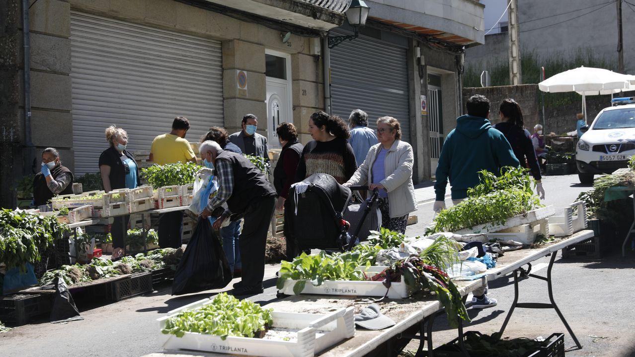 Mercado de plantas en O Carballiño