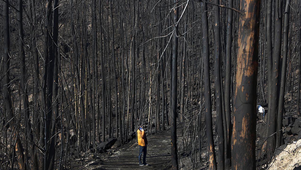 25 años de Protección Civil en Vilagarcía.Los incendios forestales de Asturias, desde Ribadeo.