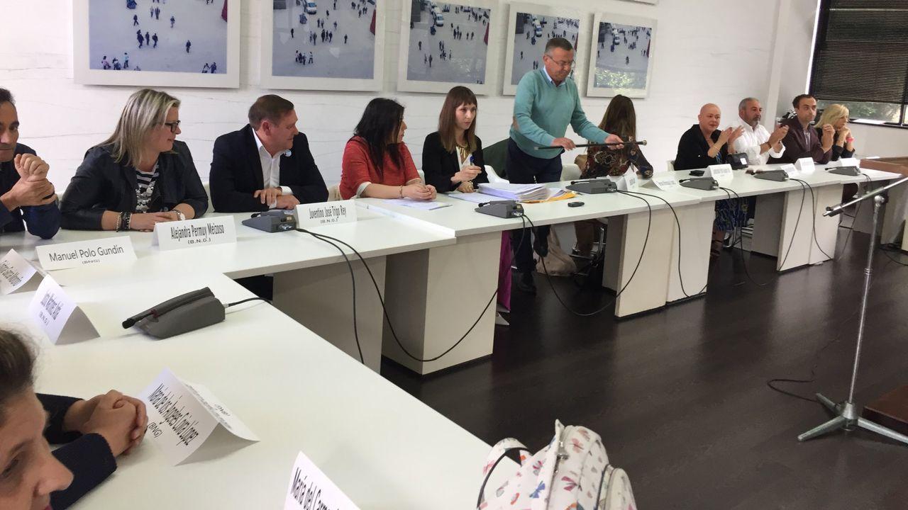 El Rey recibe en Zarzuela a las presidentas del Congreso y del Senado.Ayuntamiento de Gijón