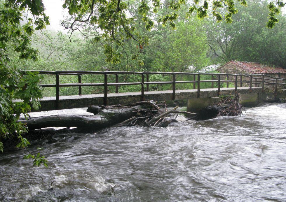 Troncos y maleza acumulados en el puente haciendo un efecto tapón.