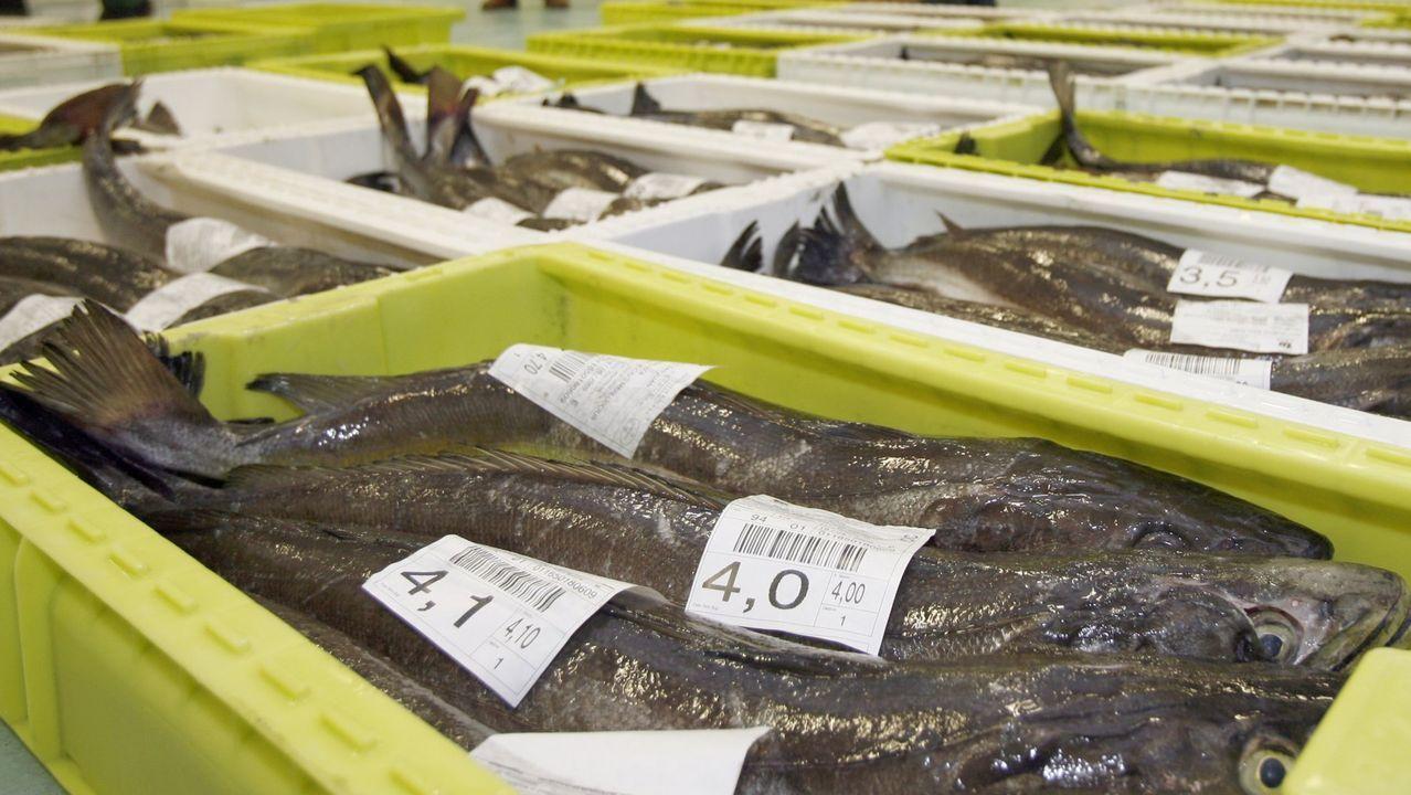 El Ana Belén llega abarrotado de xarda a Burela.La merluza fresca es el pescado más demandado en España en la cuarentena del COVID-19. Celeiro y Burela juntos son el reino de ese pescado, venden siete de cada diez ejemplares que salen de Galicia para alimentar a miles de hogares españoles