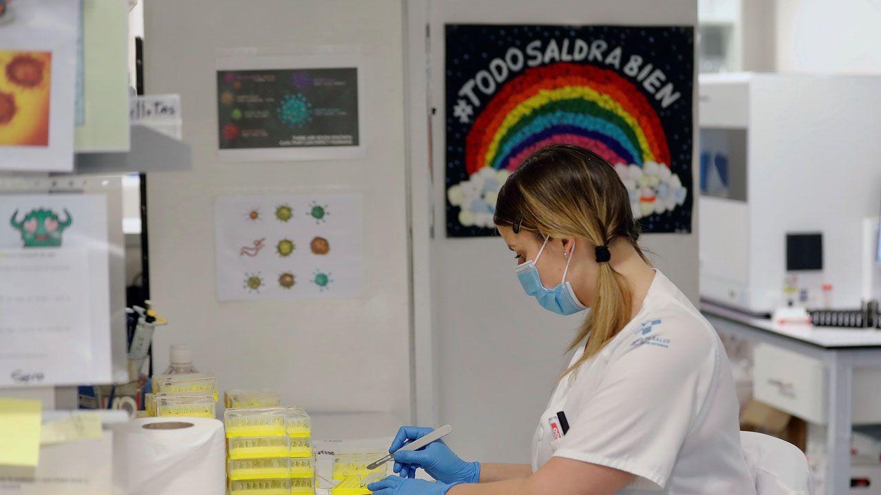 Así trabaja el laboratorio de virología del HUCA