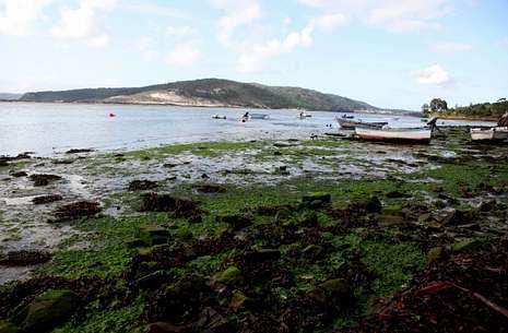 La cota de arena empezó a subir hace un año y ya tapa parte de la zona de marisqueo.