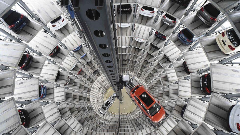 Un ejemplar de lobo.Varios coches en la fábrica de Volkswagen en Alemania.