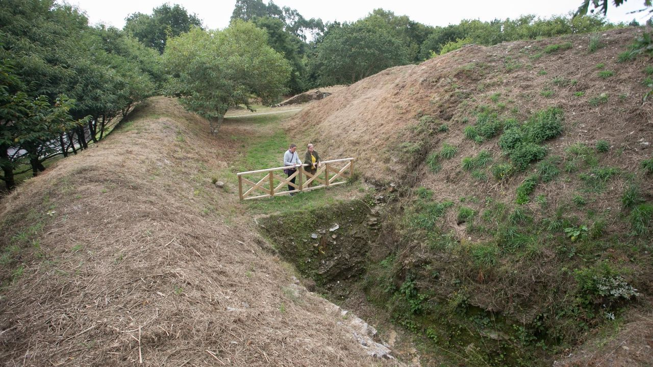 Alrededor del castro de Viladonga hay una parte de terreno en manos privadas