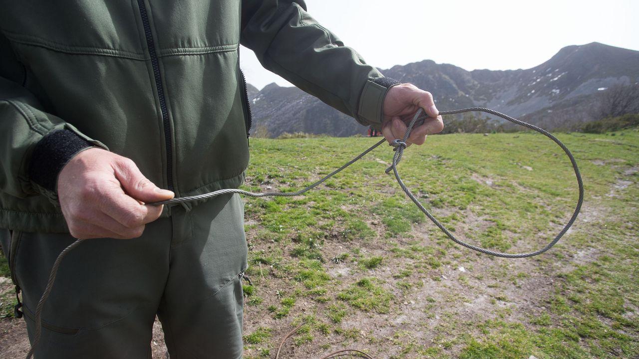Un agente muestra un lazo retirado en la reserva