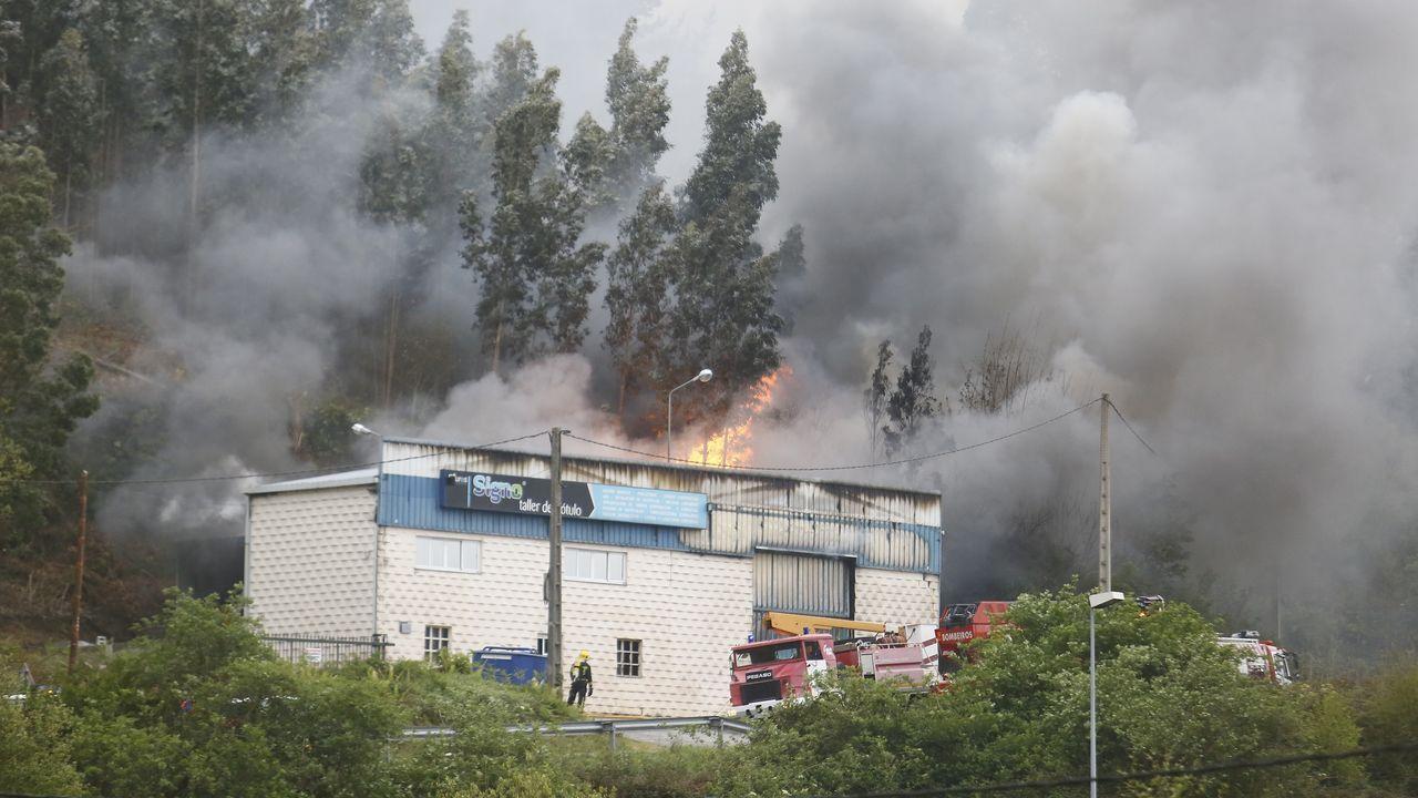Incendio en Celeiro, Viveiro.La UME desinfectando el HUCA