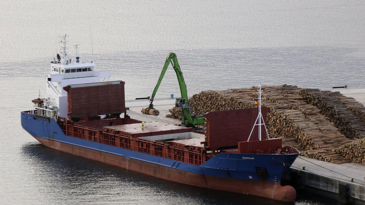 Eucalipto y pino, frente a frente.La madera representa el 12% del empleo industrial gallego. En la imagen, un buque carga troncos en el puerto exterior de Ferrol