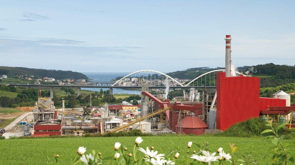 Instalaciones de Ence en Navia