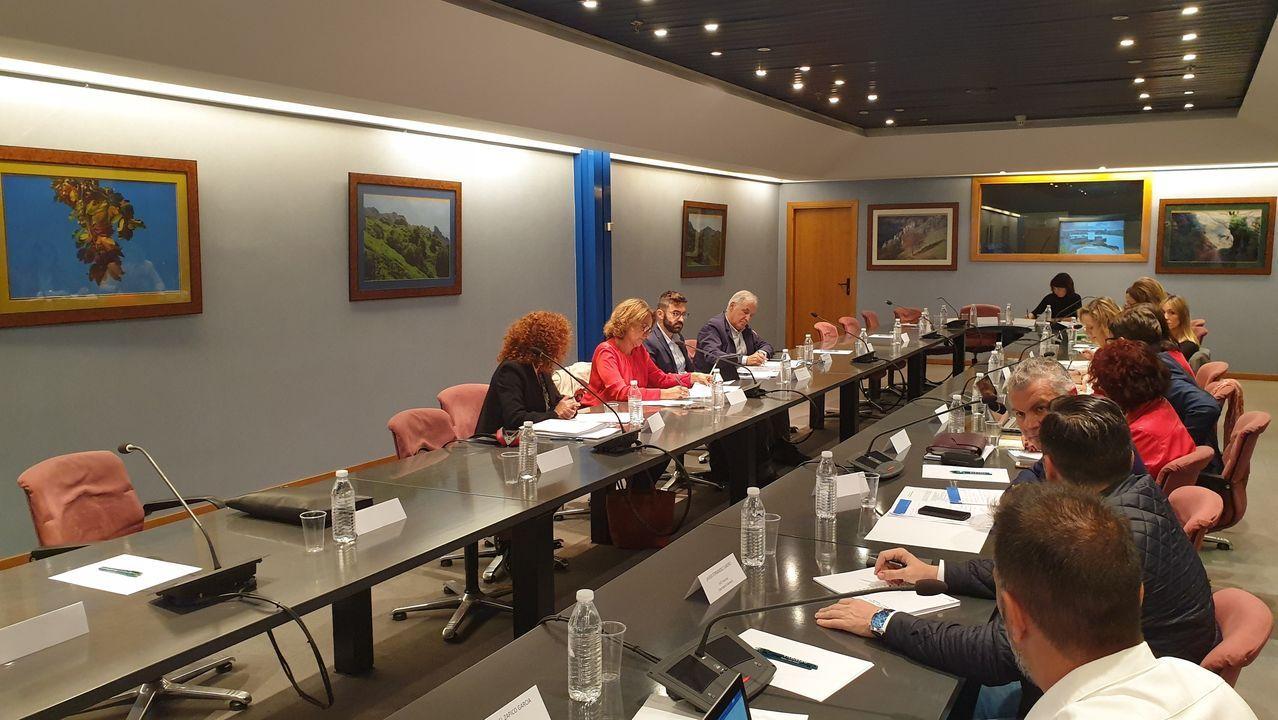 Reunión de la Comisión Mixta sobre el impacto de la transición energética en Asturias