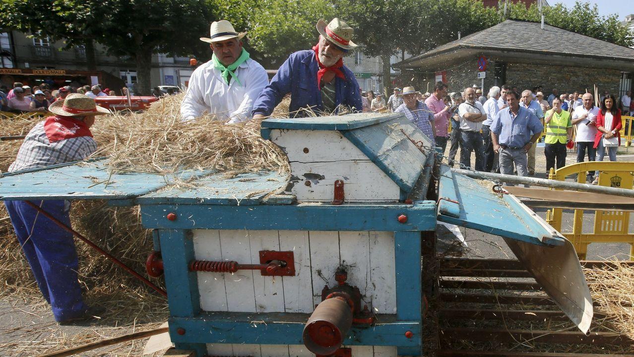 Feira do Capón, el otro gordo de Vilalba