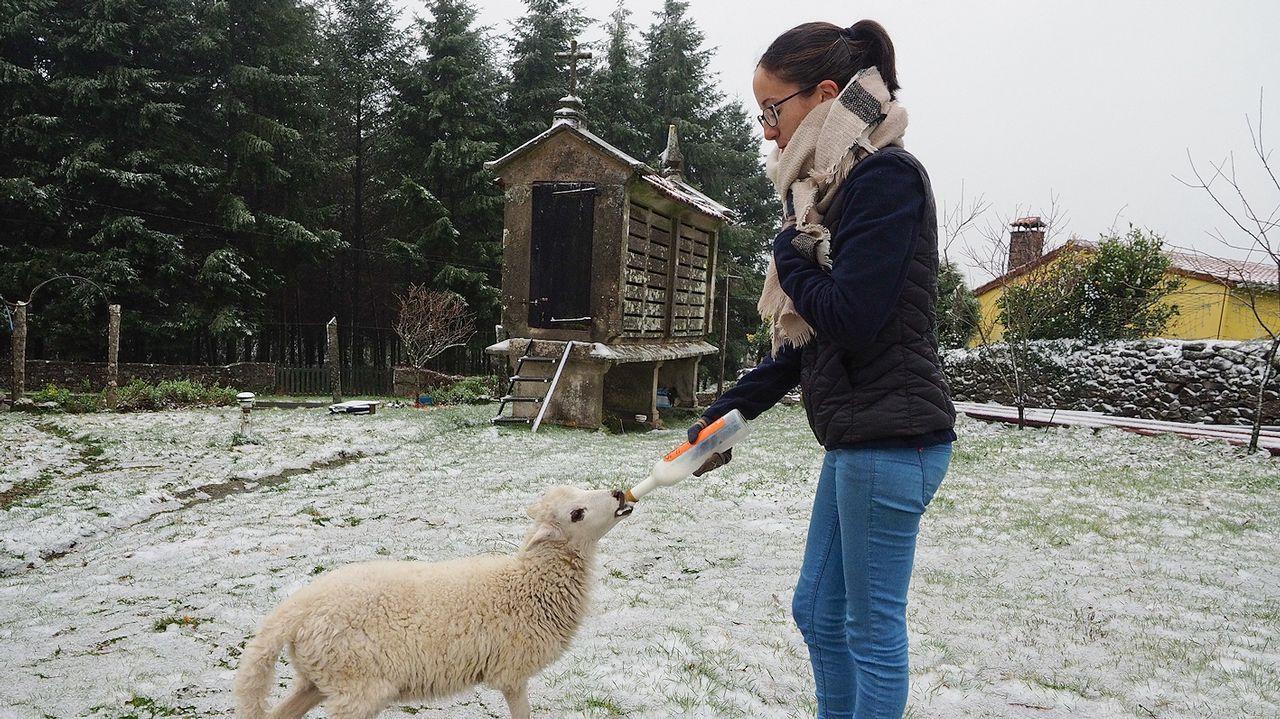 ¡Al fin llegó la nieve a Santiago y su comarca!