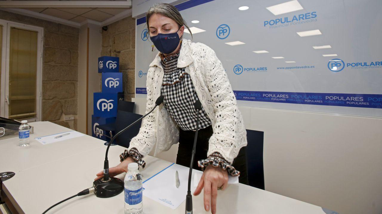 Protesta de los trabajadores de Ence.Luisa Piñeiro, en la rueda de prensa en la que presentó su dimisión, el pasado viernes