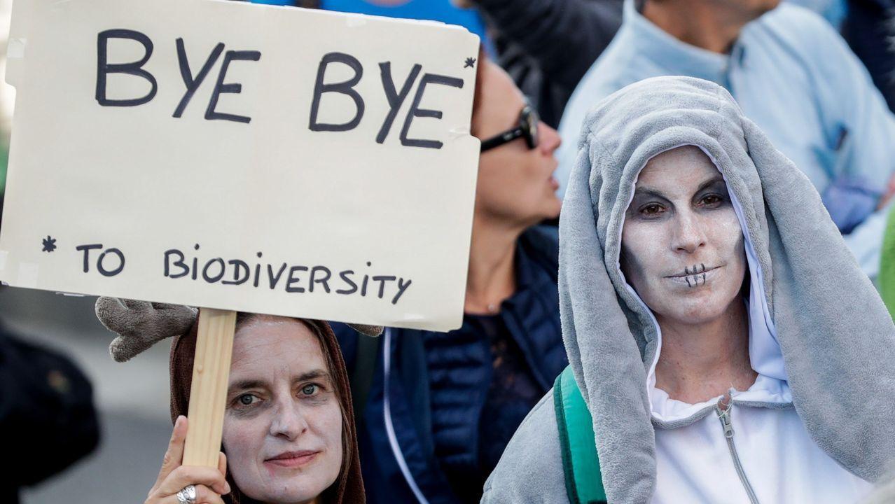 Activistas disfrazadas de muertas en Bruselas