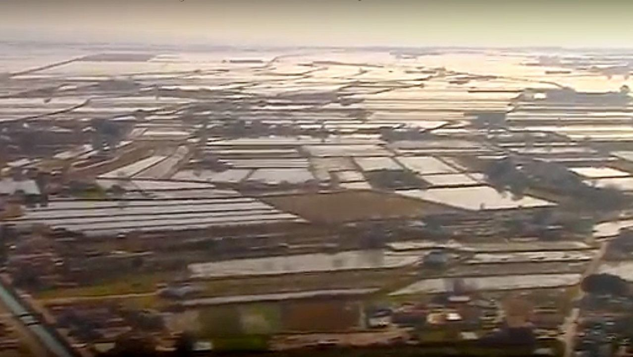 Así ha afectado la crecida del delta del Ebro.