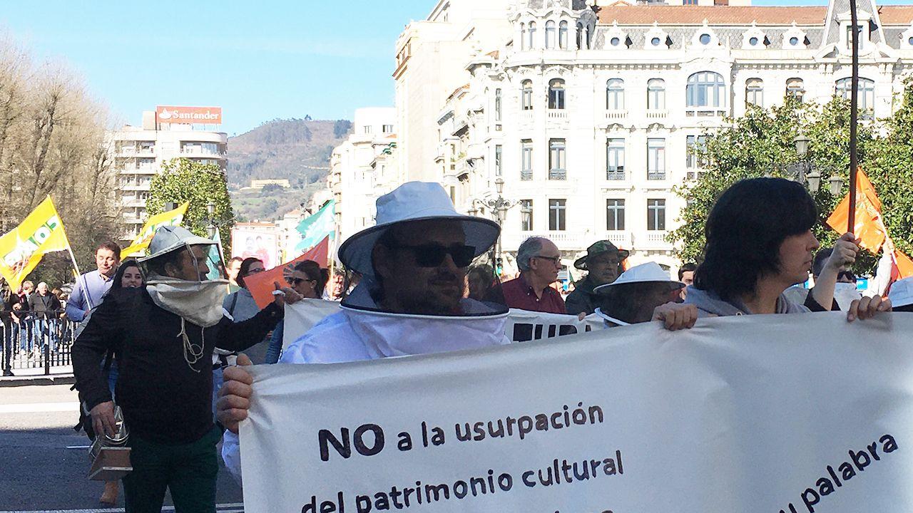 Raúl Cortina