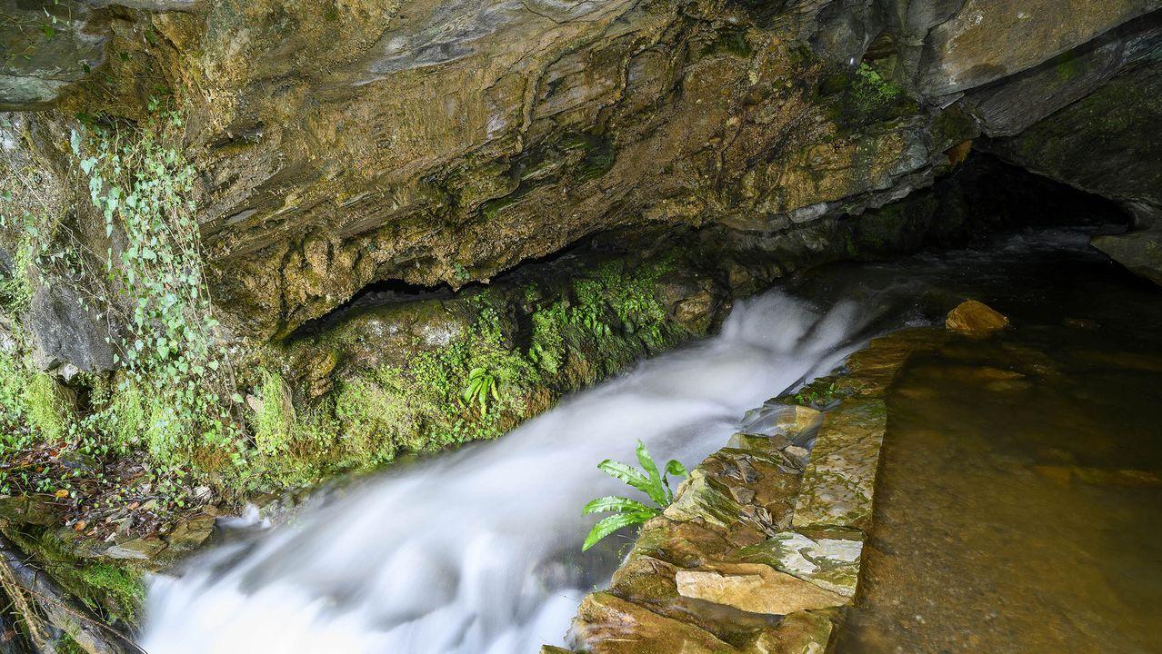 Otro aspecto del arroyo que sale de la cueva de Santalla de Abaixo