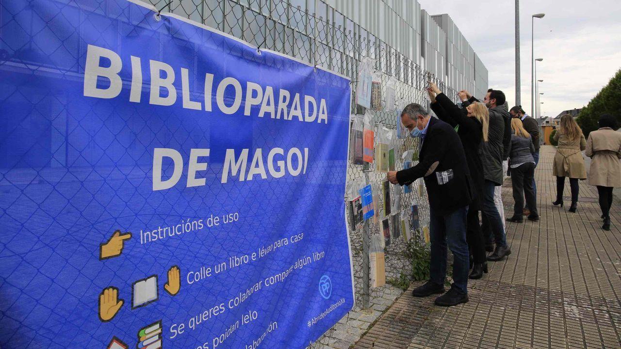 Un estudiante de la Universidad de Oviedo consulta la web en una biblioteca.Biblioparada de Magoi establecida por el PP para reclamar la reapertura del auditorio