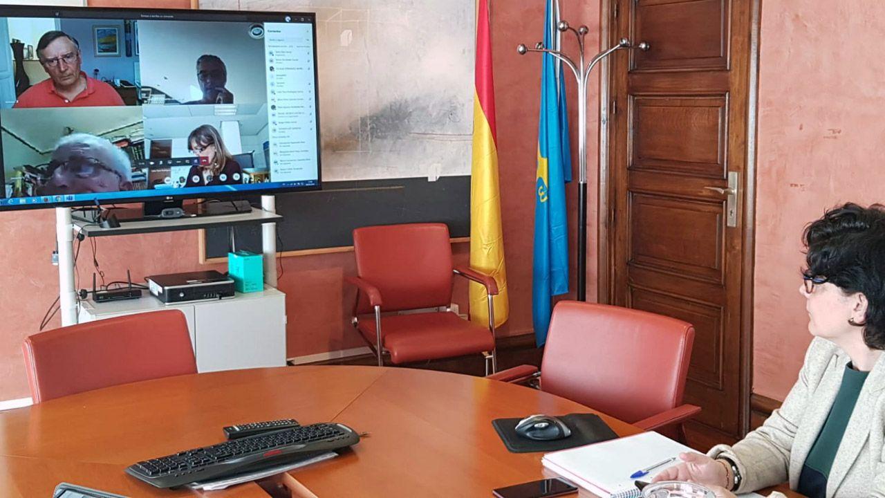 Un estudiante de la Universidad de Oviedo consulta la web en una biblioteca.Laa directora gerente del Sespa, Concepción Saavedra, en la reunión telemática del consejo de administración del Servicio de Salud del Principado (Sespa)