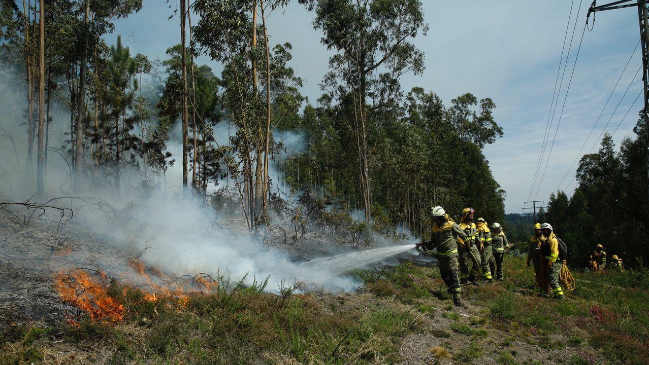 El incendio de Villestro, en imágenes