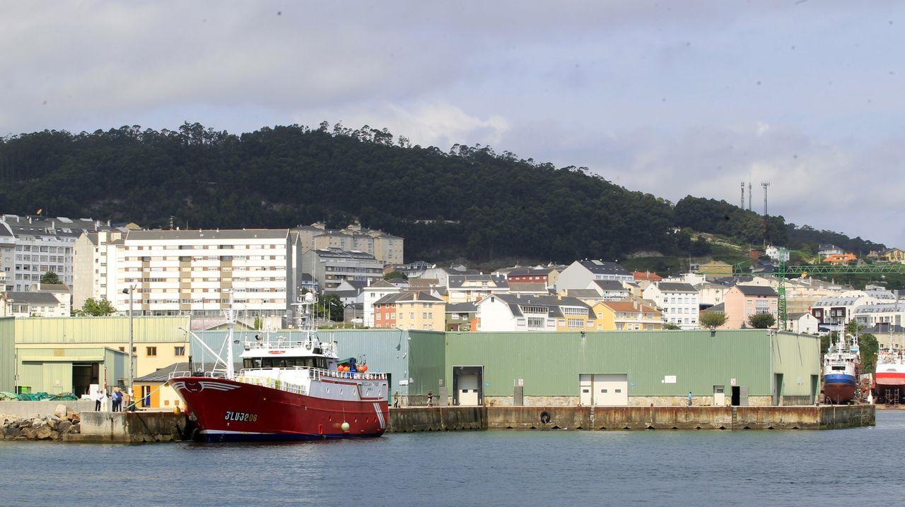Gobierno del Principado .Armadores de Burela, gestora de la lonja de ese puerto, facturó el año pasado 69,5 millones, según el informe Ardán