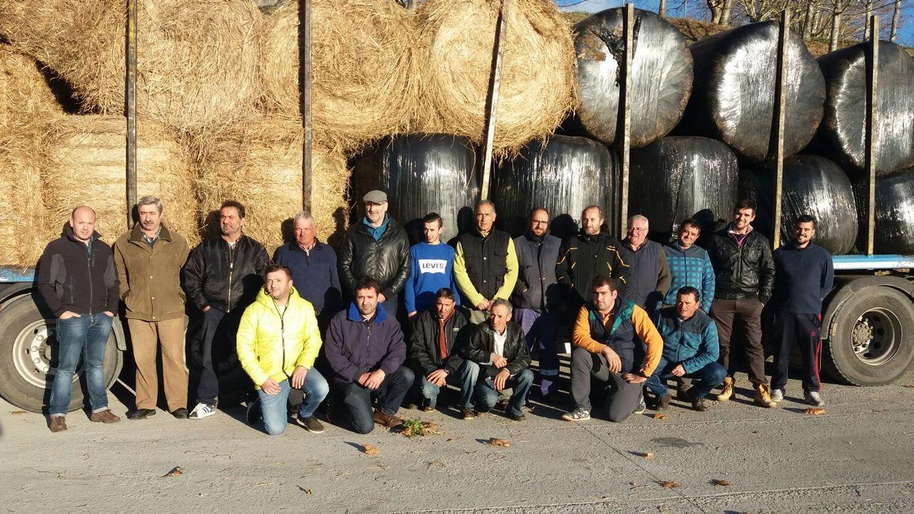 Los gallegos las prefieren rubias.Los ganaderos protagonizaron varias tractoradas pidiendo ayudas directas