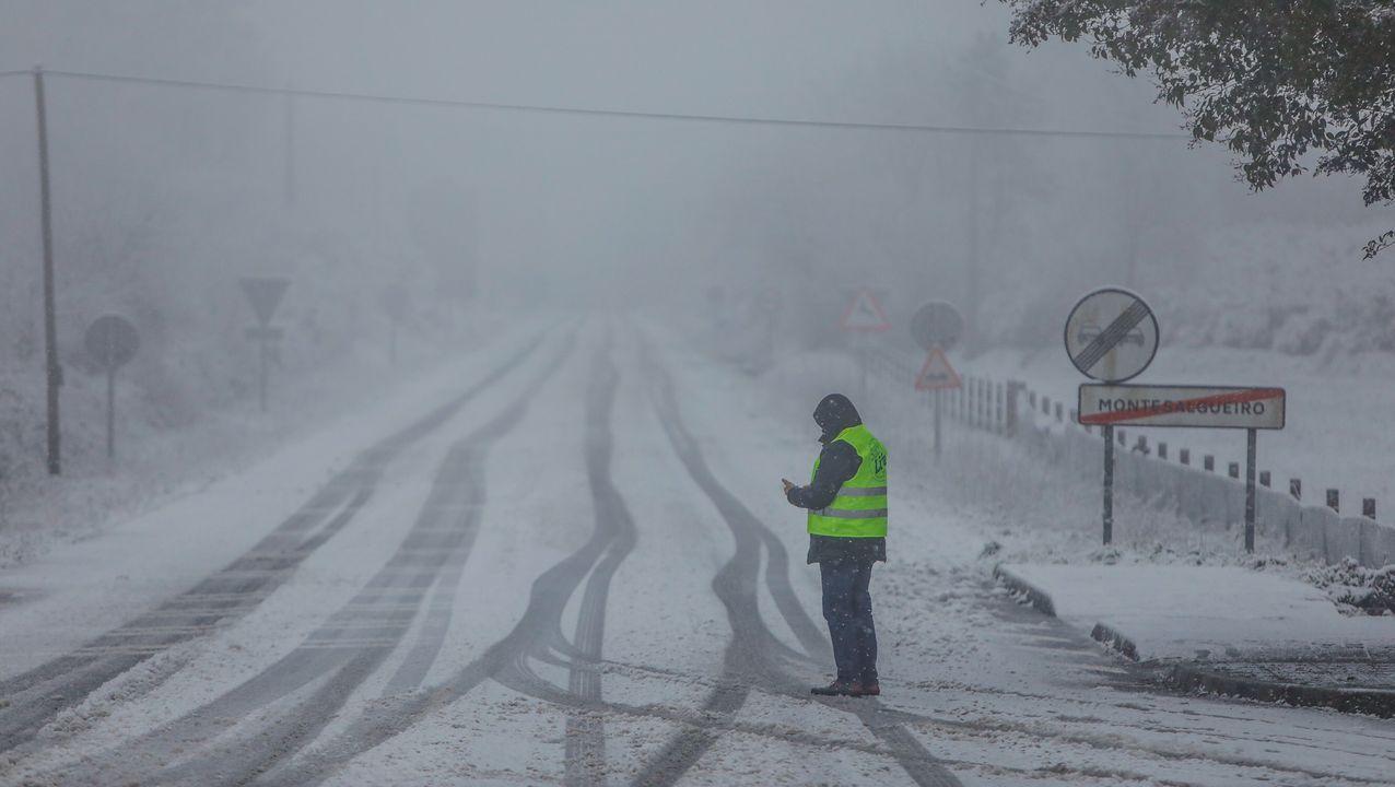 Los efectos de la «gran nevada»: el sábado la cota bajará a 200 metros.El temporal de nieve mantiene cortado el tráfico para camiones en la red principal de carreteras en el puerto de Pajares (N-630) entre Asturias y León