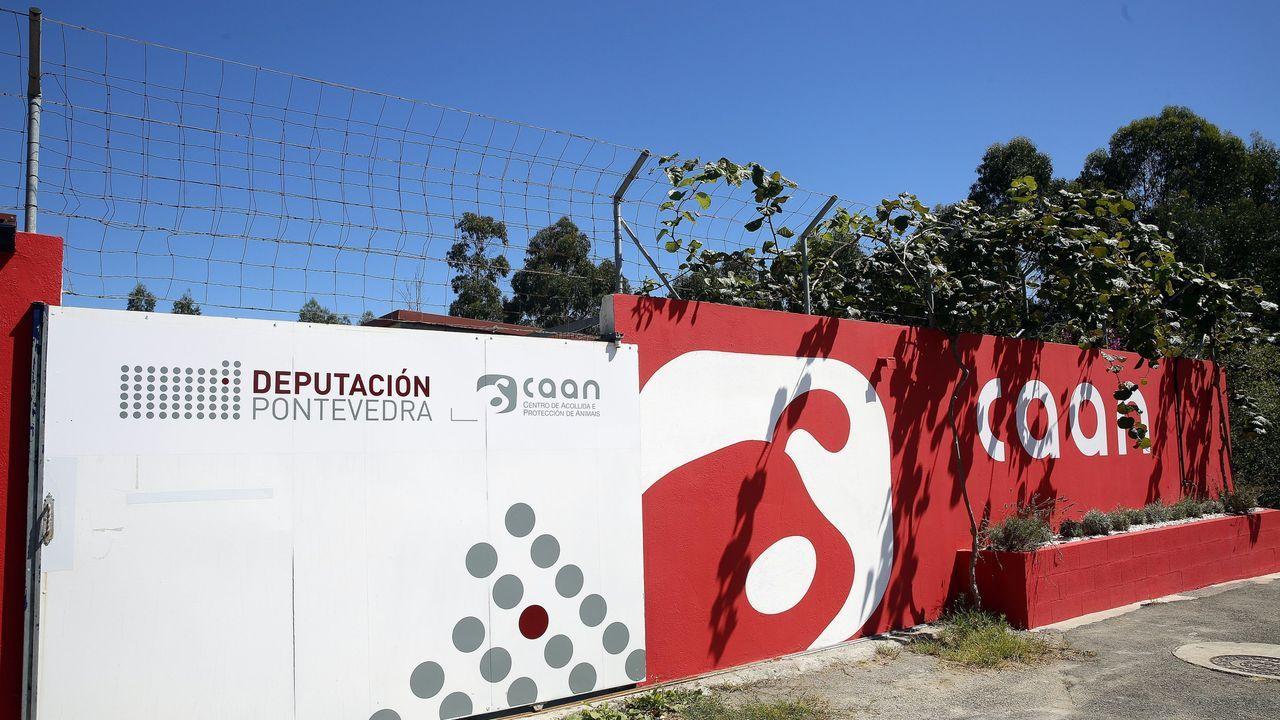Fernández Lores cuestionó que no se hayan adoptado más medidas preventivas desde junio