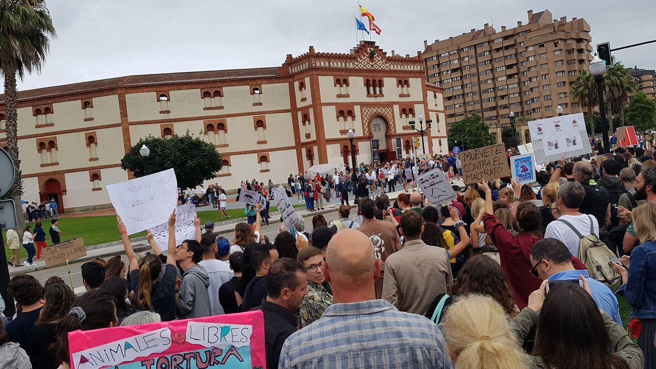 La manifestación antitaurina llegando al Bibio